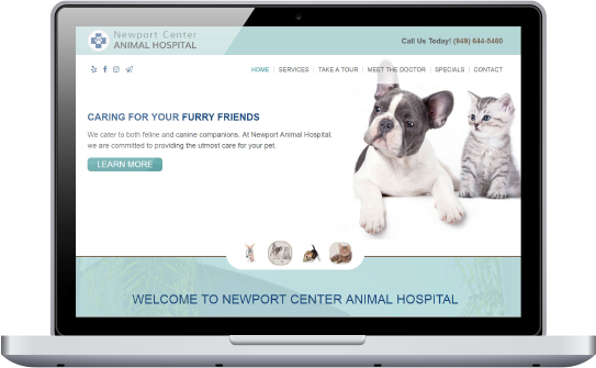 Veterinary Web design by Affordable Image